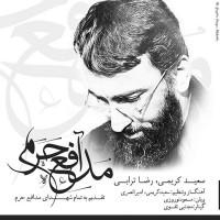 Saeed-Karimi-Reza-Torabi-Modafeye-Haram