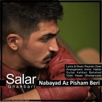 Salar-Ghanbari-Nabayad-Az-Pisham-Beri