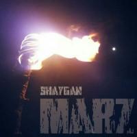 Shaygan-Marz