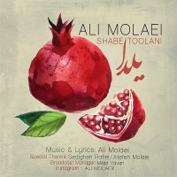 Ali-Molaei-Shabe-Toolani