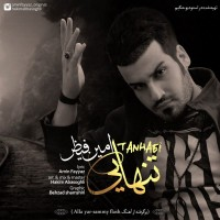 Amin-Fayyaz-Tanhaei