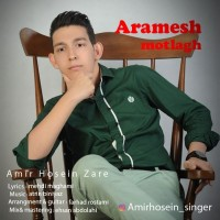 Amir-Hosein-Zare-Aramesh-Motlagh