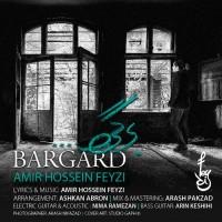 Amir-Hossein-Feyzi-Bargard