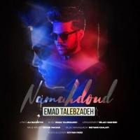 Emad-Talebzadeh-Namahdoud