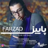 Farzad-Mohammadi-Paeiz
