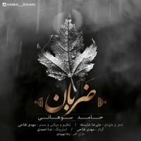 Hamed-Sohani-Zaraban
