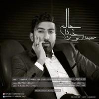 Hamid-Zarei-Khobe-Halam