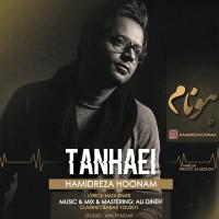 Hamidreza-Hoonam-Tanhaei