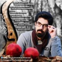 Hamidreza-Kamarani-Anar