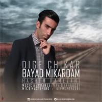 Hashem-Ramezani-Dige-Chikar-Bayad-Mikardam