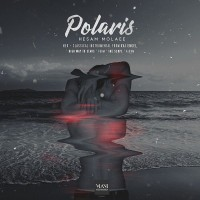 Hesam-Molaee-Polaris