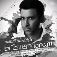 Mehdi-Alizadeh-Bi-To-Nemitonam