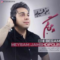 Meysam-Jamshidpour-Chi-Begam