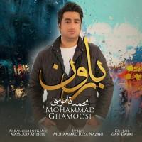 Mohammad-Ghamoosi-Baroon