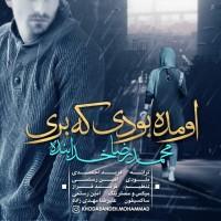 Mohammadreza-Khodabandeh-Omadeh-Budi-Ke-Beri