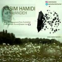 Nasim-Hamidi-Ayandeh