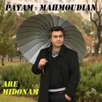 Payam-Mahmoudian-Are-Midonam