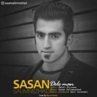 Sasan-Salimnezhad-Dele-Man