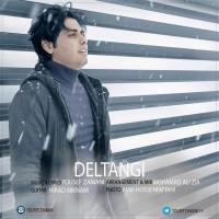 Yousef-Zamani-Deltangi
