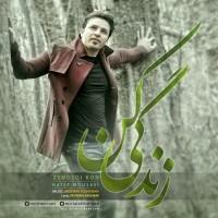 Hatef-Mousavi-Zendegi-Kon
