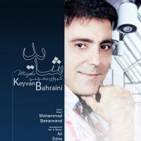 Keyvan-Bahreini-Shayad