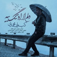 Keyvan-Mohammadi-Delem-Arad-Tang-Biya