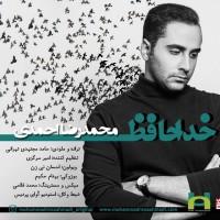 Mohammadreza-Ahmadi-Khodahafez