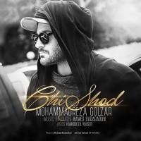 Mohammadreza-Golzar-Chi-Shod