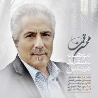 Mohsen-Ghomi-Moham-Sefid-Mishan