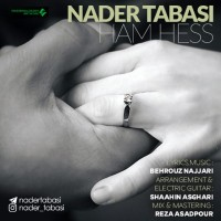 Nader-Tabasi-Ham-Hess