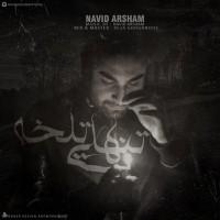 Navid-Arsham-Tanhaei-Talkhe
