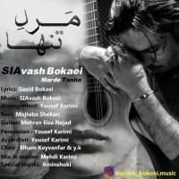 Siavash-Bokaei-Marde-Tanha