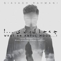 Siavash-Rahmani-Che-Hale-Badi