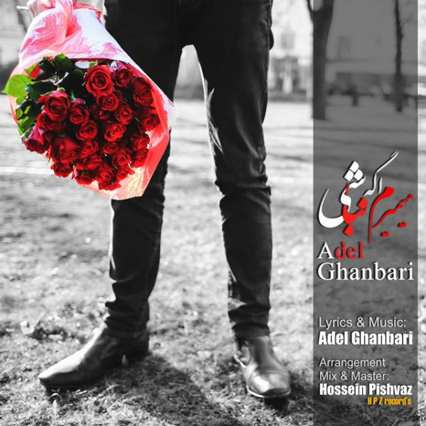 Adel Ghanbari - Mimiram Age Nabashi