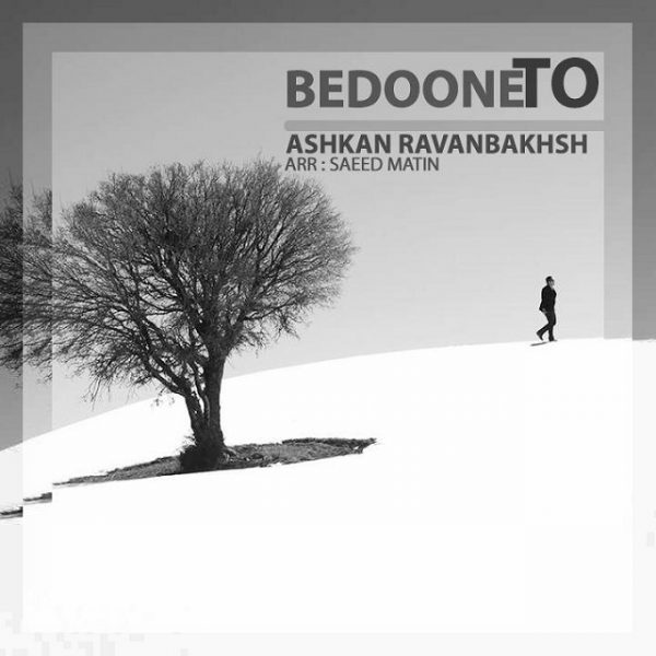 Ashkan Ravanbakhsh - Bedoone To