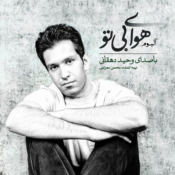 Vahid Dehghani - Irane Man (New Version)