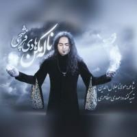 Hadi Farshchi – Naleh Makon