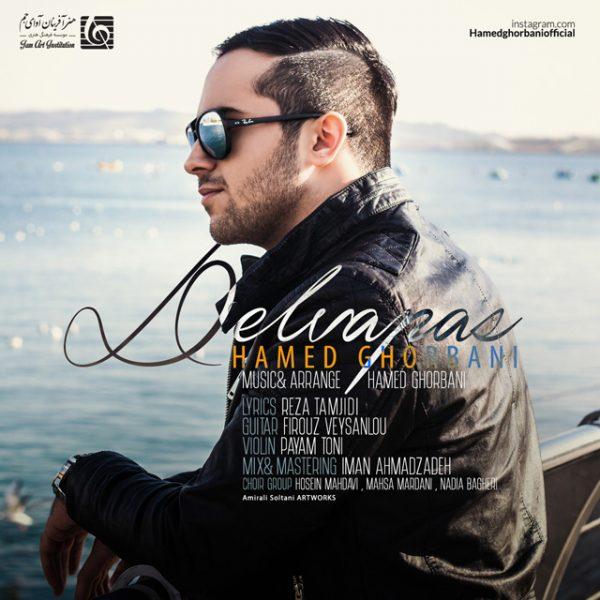 Hamed Ghorbani - Delvapas