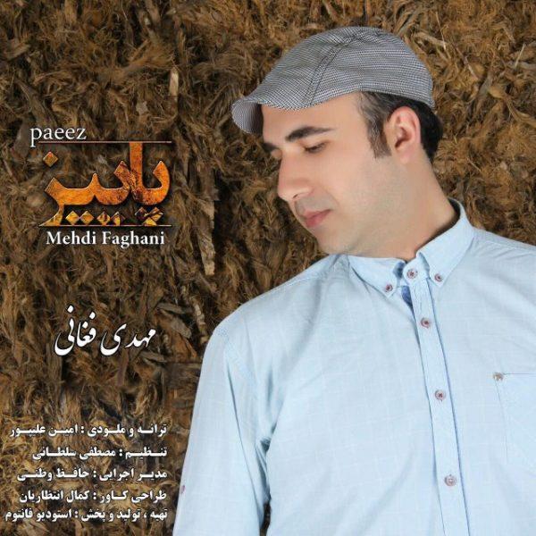 Mehdi Faghani - Paeez