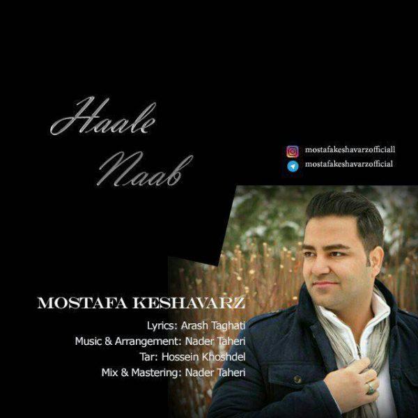 Mostafa Keshavarz - Haale Naab
