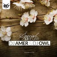 DJ-Amer-DJ-Owl-13-Bedar