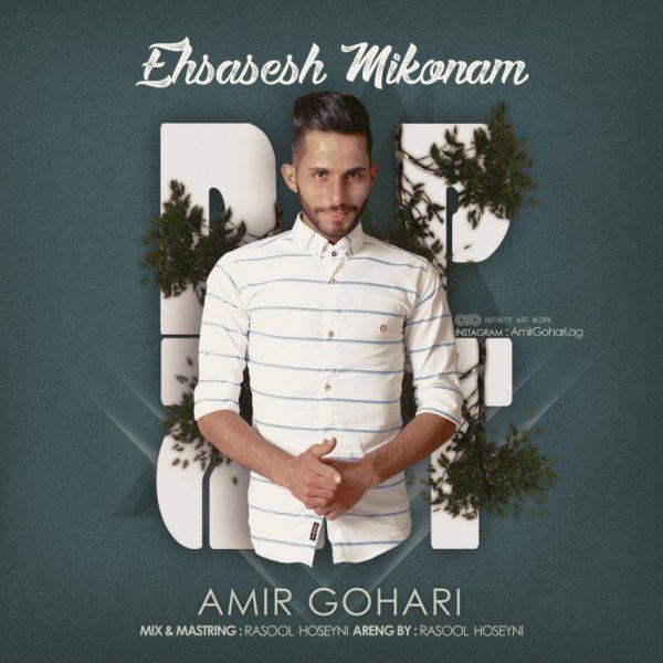 Amir Gohari - Ehsasesh Mikonam