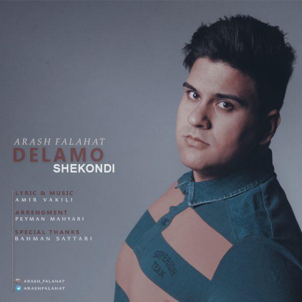 Arash Falahat - Delamo Shekoondi