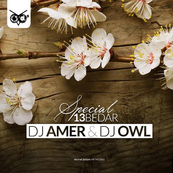 DJ Amer & DJ Owl - 13 Bedar Mix (1396)