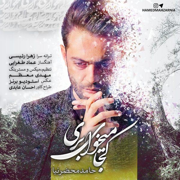 Hamed Mahzarnia - Koja Mikhay Beri