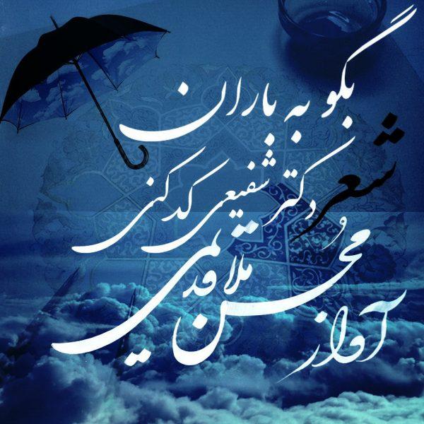 Mohsen Mollaghadimi - Begoo Be Baran