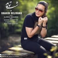 Shahin Delivand – Shabe Tavalodam