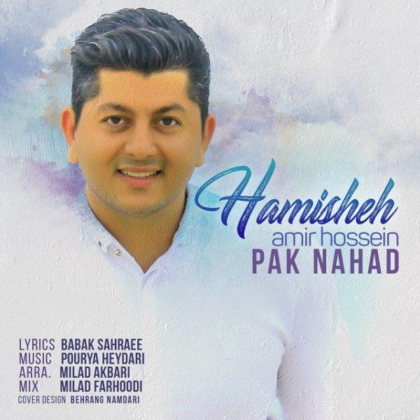 AmirHossein Paknahad - Hamisheh