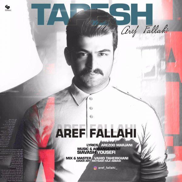 Aref Fallahi - Tapesh