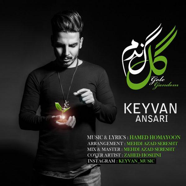 Keyvan Ansari - Gole Gandom